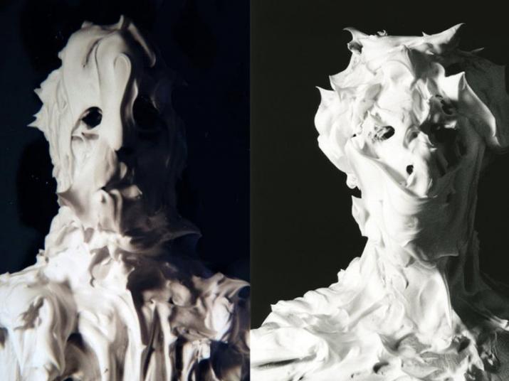 Marcus Coates moth series