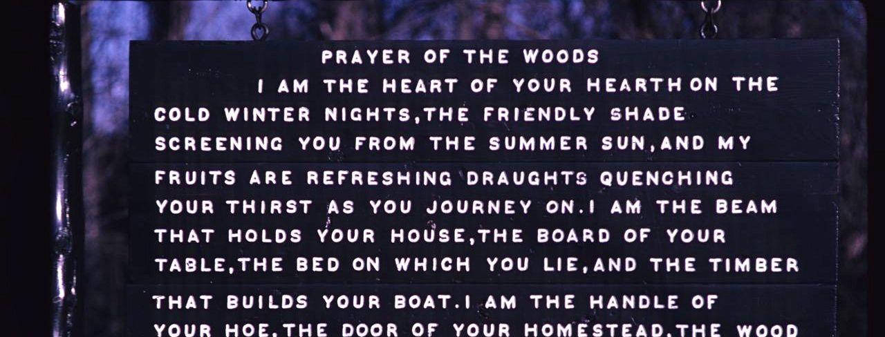 prayer4woods2