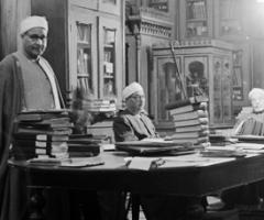 Librarians, Cairo, Wild Culture, ©2014