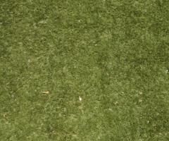 Lawn 1180