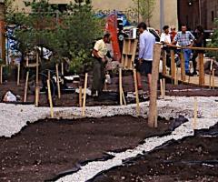 Building a roof garden, Michael Hough, Wild Culture, ©2015