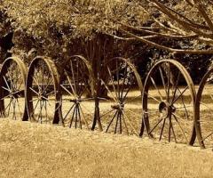 wagonwheel_fence, Journal of Wild Culture