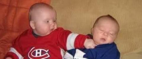 Hockey infants fighting